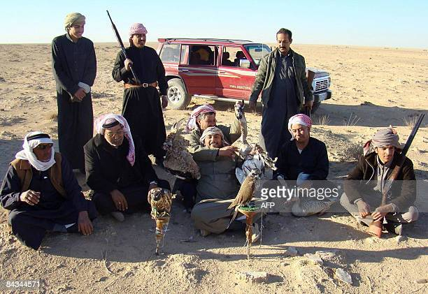 An Emirati hunters pose with their birds of prey prior to a hunt in the Anbar desert of western Iraq on January 6 2009 Emirati falconers and hunters...