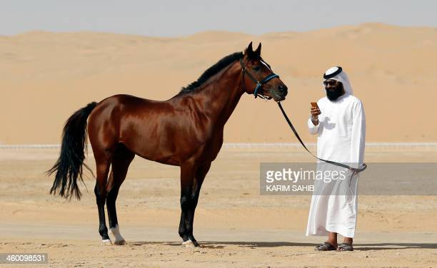 An Emirati looks at his phone as he leads his Arab horse during the Liwa 2014 Moreeb Dune Festival on January 2 in the Liwa desert 250 kilometres...
