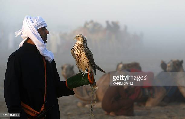 An Emirati man holds his falcon during a falconry competition part of the 2014 International Festival of Falconry in Hameem 150km west of Abu Dhabi...