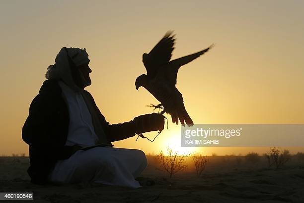 An Emirati man sits with his falcon during a falconry competition part of the 2014 International Festival of Falconry in Hameem 150km west of Abu...
