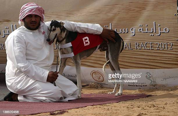 An Emirati man waits with his Arabian saluki dog for the start of the annual traditional race in Shweihan on the outskirts of Abu Dhabi on February...