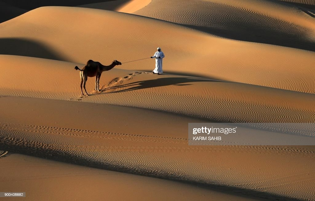 An Emirati man walks a camel across the Liwa desert, some 250 kilometres west of the Gulf emirate of Abu Dhabi, during the Liwa 2018 Moreeb Dune Festival on January 2, 2018. The festival, which attracts participants from around the Gulf region, includes a variety of races (cars, bikes, falcons, camels and horses) or other activities aimed at promoting the country's folklore. /