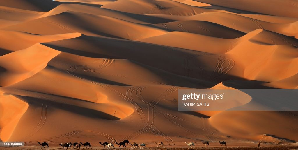An Emirati man walks with camels across the Liwa desert, some 250 kilometres west of the Gulf emirate of Abu Dhabi, during the Liwa 2018 Moreeb Dune Festival on January 2, 2018. The festival, which attracts participants from around the Gulf region, includes a variety of races (cars, bikes, falcons, camels and horses) or other activities aimed at promoting the country's folklore. /