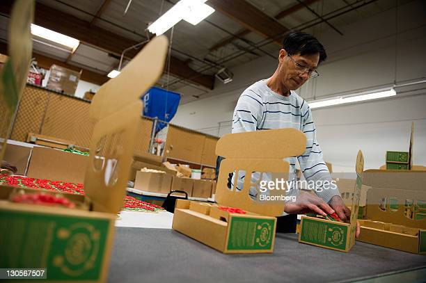 An employee assembles a toy for Green Toys Inc at the Central Region Employment Services Center Work Center in San Carlos California US on Wednesday...