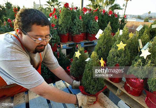 an employee at a home depot store sets out minature christmas trees and other christmas decorations - Is Home Depot Open On Christmas Day
