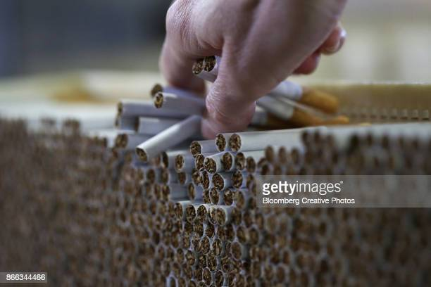 An Employee Checks Cigarettes During Production