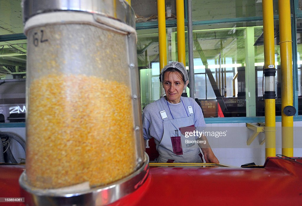 An employee checks corn grains as they pass through a milling machine at Granexport AD port, part of MK Group, on the Danube river in Pancevo, Serbia, on Tuesday, Oct. 9, 2012. Goods volumes on Europe's longest river after the Volga are 80 percent lower than on the Rhine, the region's busiest waterway, according to EU figures. Photographer: Oliver Bunic/Bloomberg via Getty Images