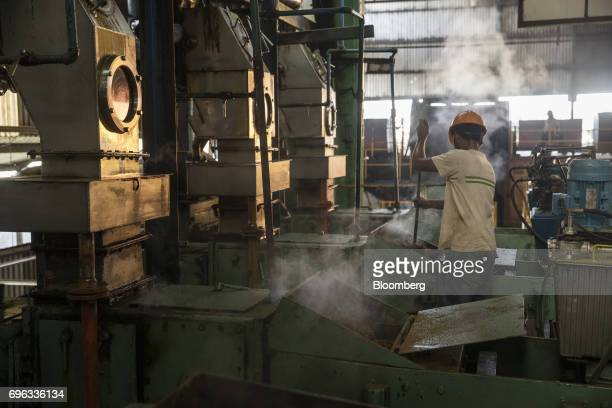 An employee collects oil palm fruit fiber during the extraction process at the Empresa Reforestada de Palma de Peten SA plantation in Sayaxche El...