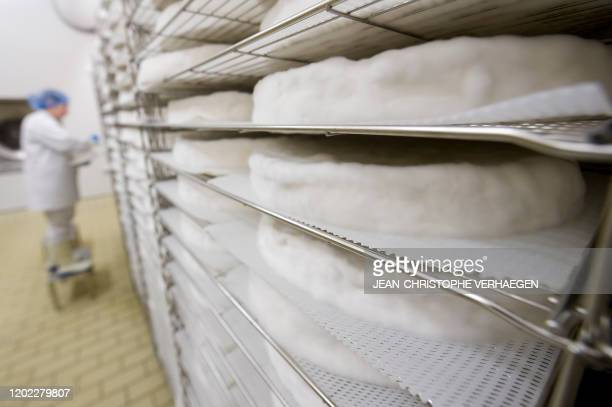 An employee controls the Brie de Meaux cheeses ripening as the rind forms, on February 16 at the Donge cheese factory, using handicraft production...