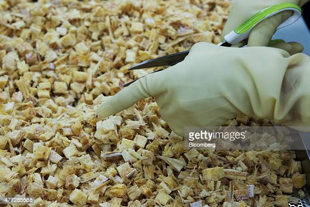 An employee cuts dried pollock at the North Pacific factory in Busan South Korea on Thursday June 4 2015 South Korea's manufacturing producer price...