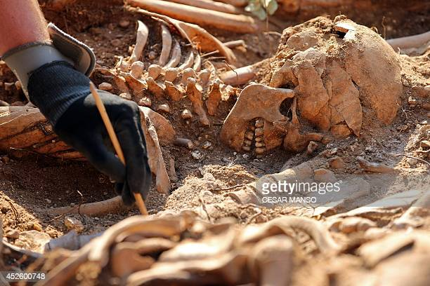 An employee exhumes on Mount Estepar near Burgos on July 24 the remains of people dumped in mass graves over the summer of 1936 during the Spanish...