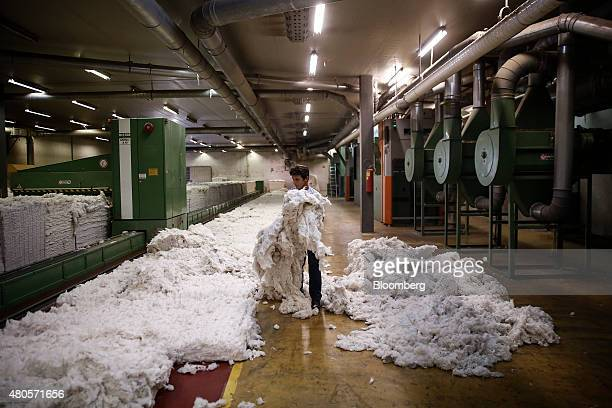 An employee holds a bundle of unprocessed cotton at the Selected Textiles SA processing plant in Farsala Farsala Greece on Friday July 10 2015 Greece...