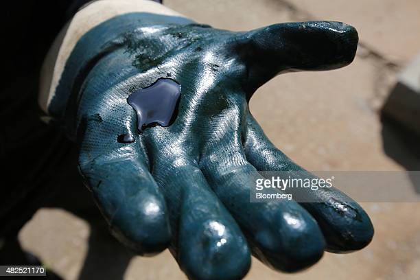 An employee holds a sample of crude oil on his glove in this arranged photograph at the 'TANECO' refining and petrochemical plant operated by Tatneft...