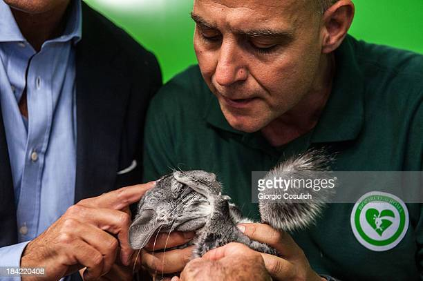 An employee invites children to touch a chinchillas during the opening of the event 'Getting in touch with nature' in the new educational area at the...