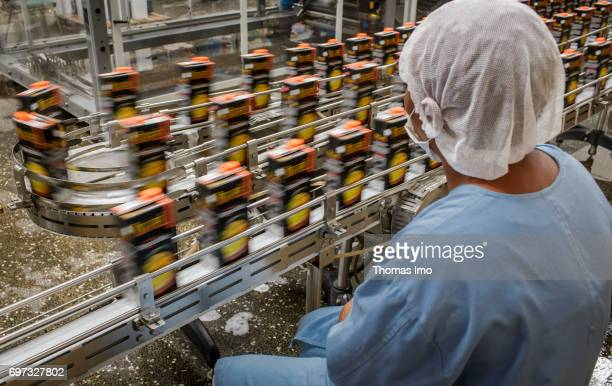 An employee is sitting on a conveyor belt on which Tetrapacks with pineapple juice are transported Production of pineapple juice at beverage...