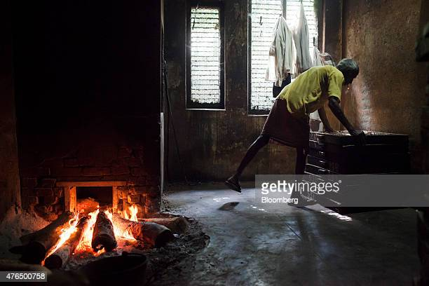 An employee lifts a tray of bidi cigarettes to roast in a furnace at the Sarkar Bidi Factory in Kannauj Uttar Pradesh India on Wednesday June 3 2015...