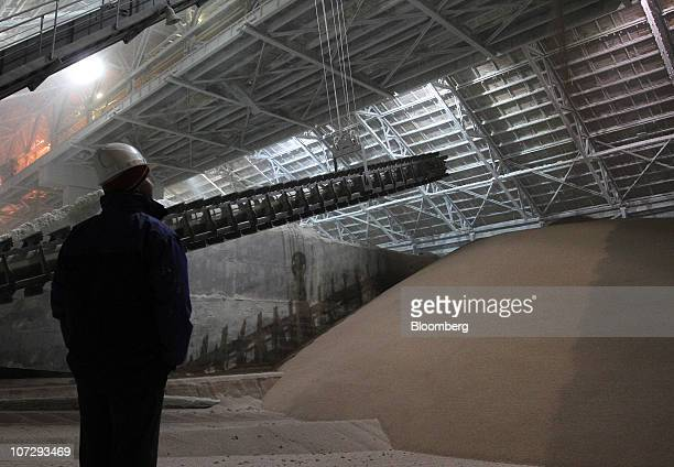 An employee looks at a pile of OAO Ammophos phosphate plant fertilizer stored at the OAO PhosAgro processing plant in Cherepovets Russia on Thursday...