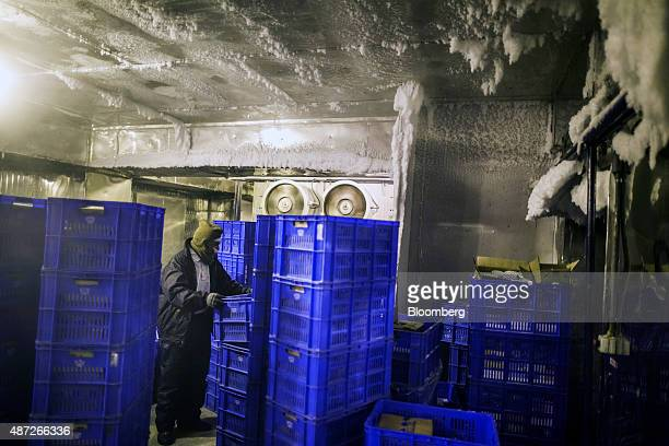 An employee moves a crate of frozen goods in the blast chiller at the Mother Dairy Pty ice cream plant in New Delhi India on Friday Aug 28 2015 With...