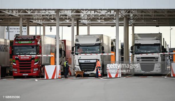 An employee of Eurotunnel and his dog check trucks on their way to Great Britain during a day of test in case of Brexit at the entrance of the...