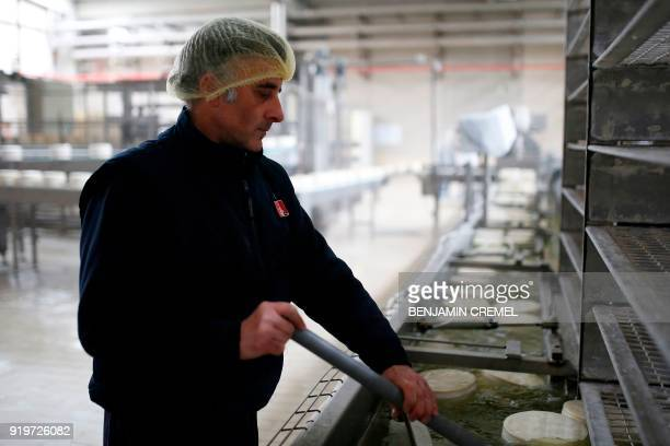 An employee of 'Garcia Baquero' cheese manufacturer works at the production line of the company's factory in Alcazar de San Juan on February 15 2018...
