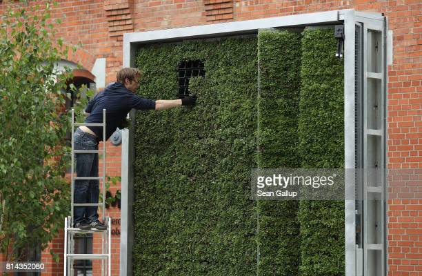 An employee of German startup Green City Solutions puts the finishing touches on a CityTree on July 13 2017 in Berlin Germany The CityTree is a panel...
