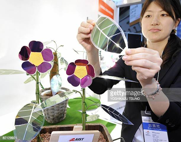An employee of Japan's Advanced Industrial Science and Technology displays a prototype model of leaf and flower shaped organic solar cells colored...