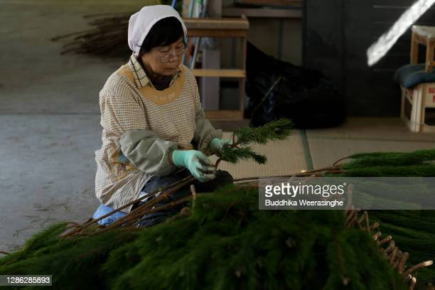 An employee of Nagomi Farm sorts freshly harvested three-year-old Wakamatsu trees on a production line in preparation for shipping on November 18,...