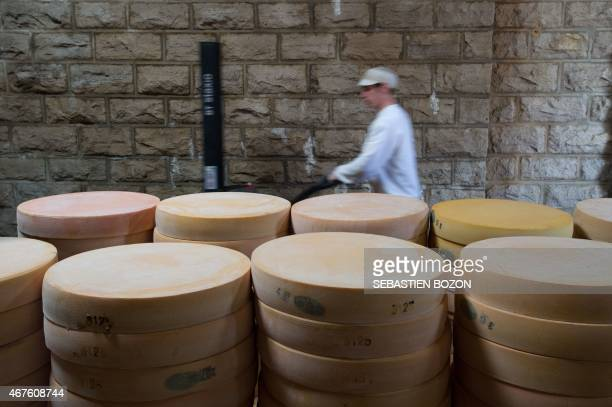 An employee of the Comte cheese ripening firm Rivoire et Jacquemin carries Comte cheese tommes on march 10 2015 in Montmorot eastern France Thanks to...