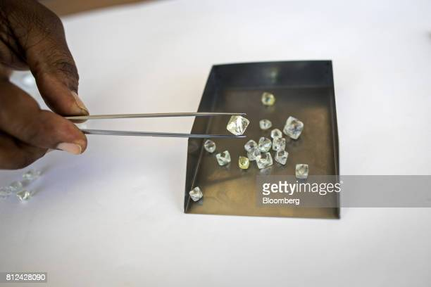 An employee places a rough diamond in a sorting tray during the grading process at the Namibian Diamond Trading Co diamond processing and valuation...
