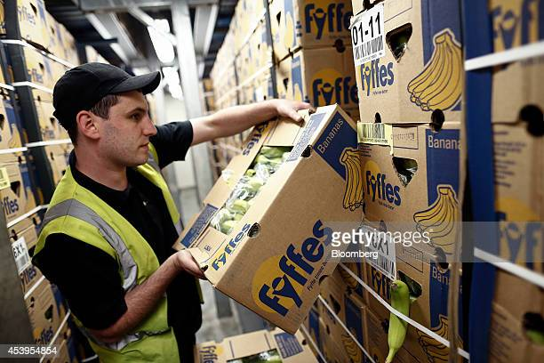 An employee selects a box of packed Fyffes bananas before carrying out a quality control check at Fyffes Plc's ripening and fruit distribution plant...
