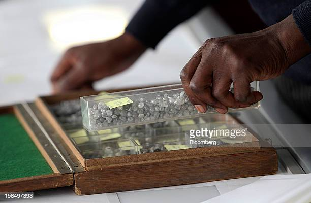 An employee selects a tray of uncut diamonds from a case before grading at DTC Botswana a unit of De Beers in Gaborone Botswana on Thursday Oct 25...