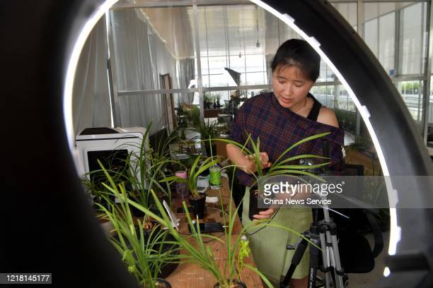 An employee sells Cymbidium orchid as she live streams video on a smartphone at a biological technology company amid the coronavirus outbreak on...