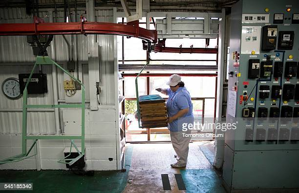 An employee sets a rack of mosquito coils onto a lift at the Kishu Factory of Dainihon Jochugiku Co Ltd on July 6 2016 in Arita Japan Japanese insect...