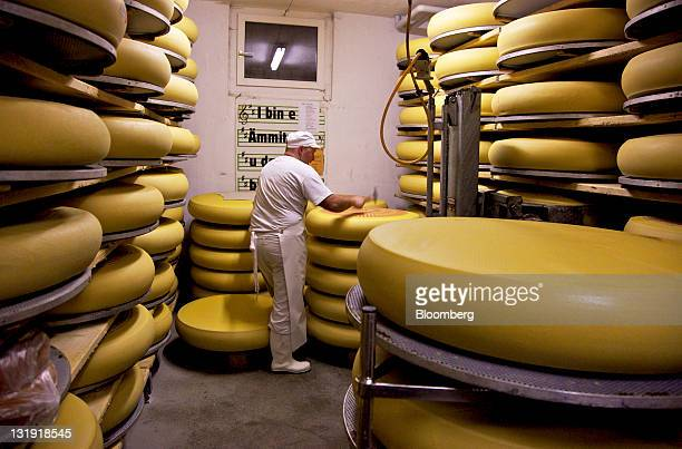 An employee tests a whole Emmentaler Switzerland AOC cheese for holes in the fermenting cellar at the Hupfenboden dairy in Hupfenboden near...