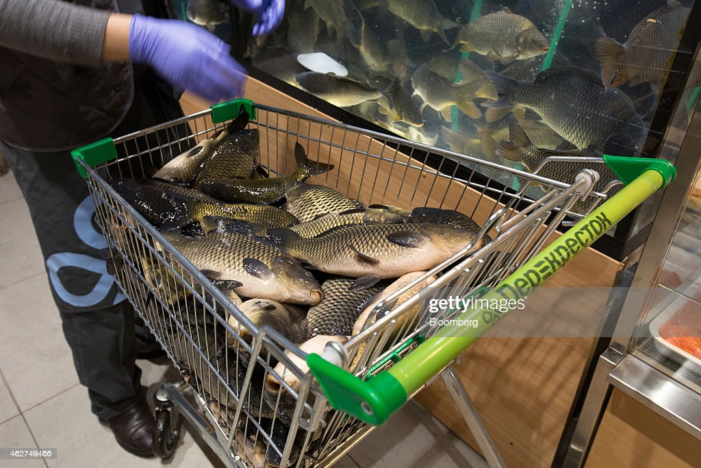 An employee transfers live carp from a shopping cart into a fish tank inside a Perekrestok supermarket, operated by X5 Retail Group, in Moscow, Russia, on Tuesday, Feb. 4, 2015. The ruble has continued its slide this year following a 46 percent plunge last year against the dollar, the worst performance of about 170 currencies tracked by Bloomberg after Ukraine, accelerating inflation to a five-year high and eroding consumer spending. Photographer: Andrey Rudakov/Bloomberg via Getty Images