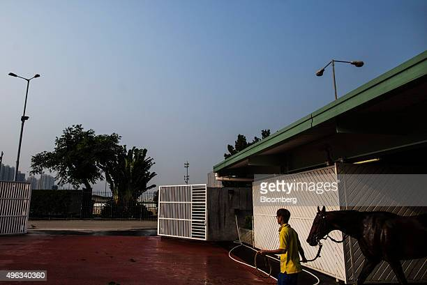 An employee walks a horse from the equine swimming pool building at the Sha Tin Racecourse, operated by Hong Kong Jockey Club, in Hong Kong, China,...