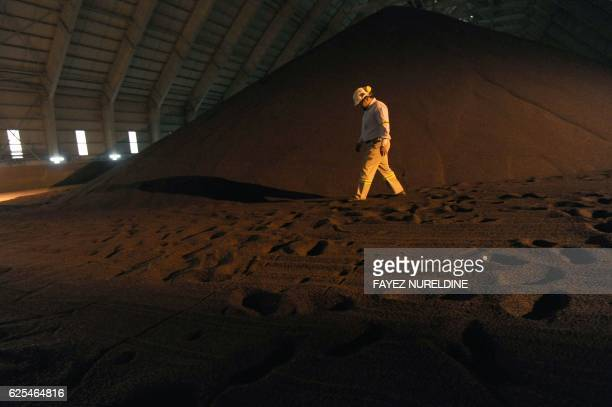 An employee walks in a phosphate storage facility in the Maaden Aluminium Factory in Ras AlKhair Industrial area near Jubail City 570 kms east of the...