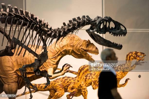 An employee walks past a dinosaur skeletal specimen while preparing a dinosaur exhibition in Chiba on July 13 2017 / AFP PHOTO / Behrouz MEHRI