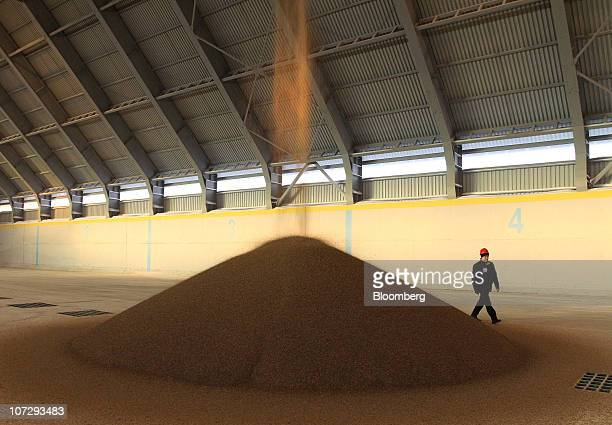 An employee walks past a pile of OAO Ammophos phosphate plant fertilizer as it is being poured into a storage facility at the OAO PhosAgro plant in...