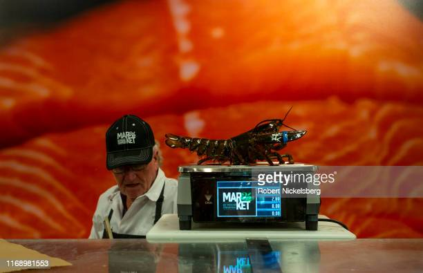 An employee weighs a live lobster for a customer at a Price Chopper supermarket in South Burlington, Vermont on August 16, 2019. Price Chopper is a...