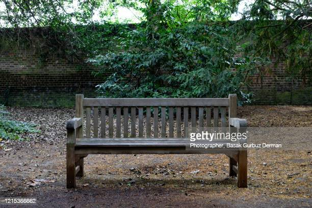 an empty bench in a park - park bench stock pictures, royalty-free photos & images