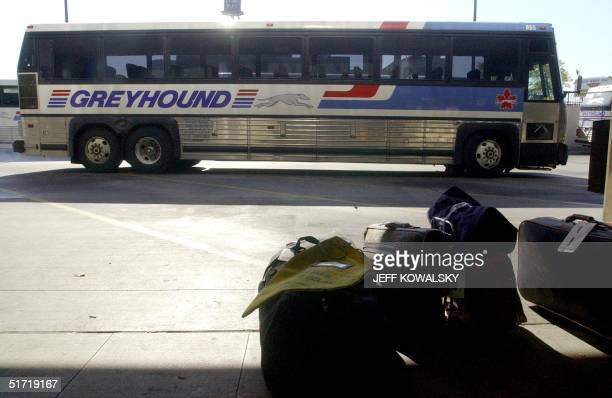 60 Top Greyhound Bus Pictures, Photos, & Images - Getty Images