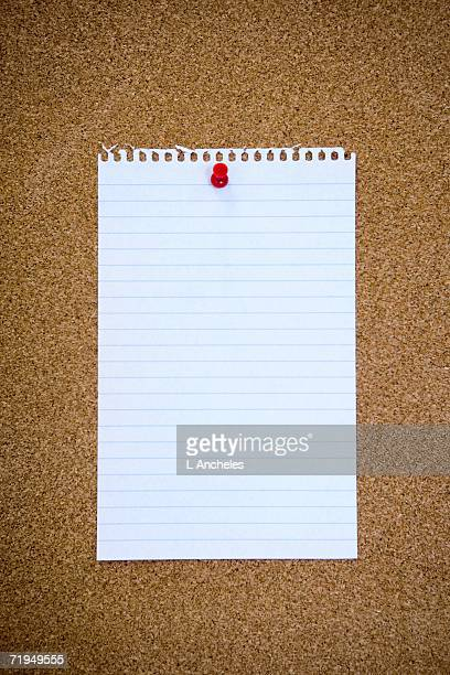 An empty page on a notice board.
