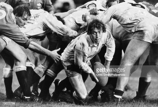 An English scrum-half about to feed the ball out from a scrum during and England Vs Wales match, circa 1980.