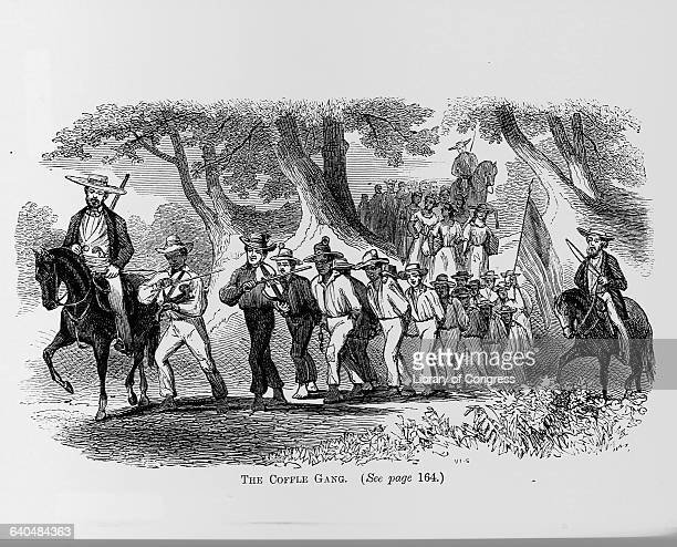 An engraving by VaningenSnyder from The Suppressed Book About Slavery published in 1864 entitled The Coffle Gang depicts a group of slaves chained...