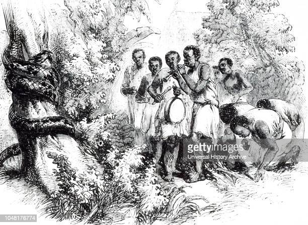 An engraving depicting snake worship in the Kingdom of Dahomey Africa Dated 19th century