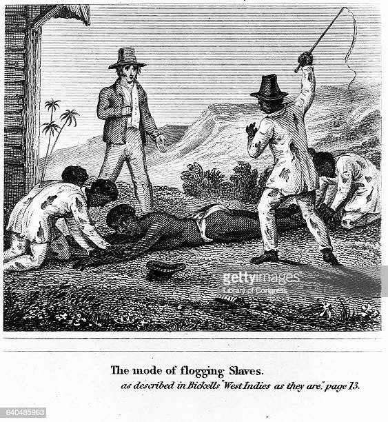An engraving depicts Bickell's description of a mode of flogging slaves in West Indies as They Are African American slaves restrain a female slave...