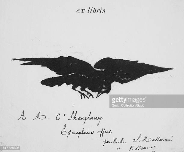 An engraving of the titular bird from the story The Raven by Edgar Allen Poe the illustration was done by French Impressionist Edouard Manet the...