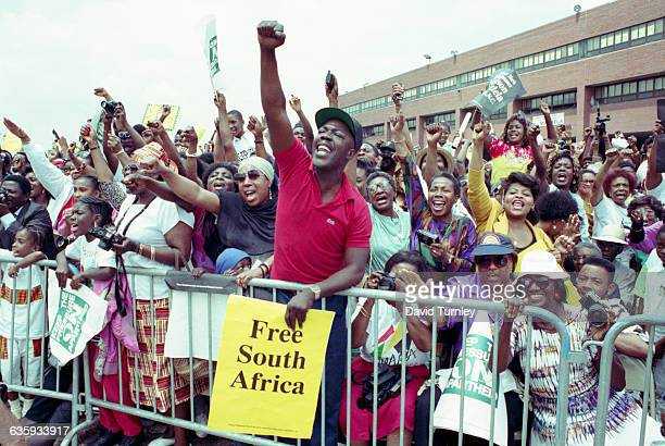An enthusiastic crowd in Brooklyn cheers for antiapartheid activist Nelson Mandela who was recently released after spending 27 years in a South...
