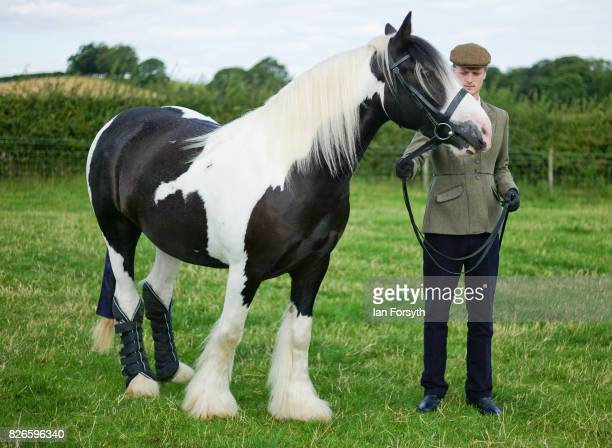 An entrant waits to enter the main show arena with his horse during the Osmotherley Country Show on August 5, 2017 in Osmotherley, England. The...